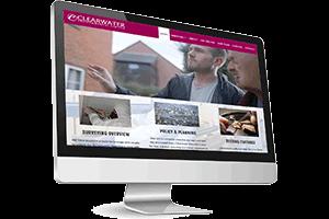 business website example 3